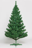 Christmas tree undecorated Stock Photo
