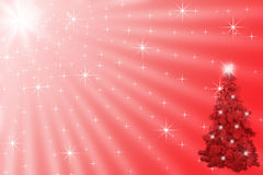 Christmas tree under shining stars in bright sunny Stock Images