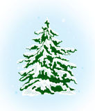 Christmas tree under the snow Stock Images