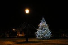 Christmas Tree under a Street Lamp Stock Image