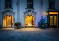 Christmas tree in Vienna Stock Photography