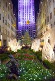 Christmas Tree View 2015 Royalty Free Stock Photos