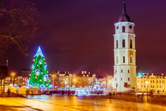 Christmas tree in Vilnius Lithuania 2015. Cathedral square with tower Stock Photography