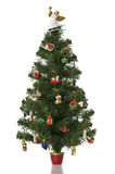 Christmas tree on white background. Royalty Free Stock Photo