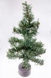 Christmas tree. On White Background Stock Image