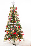 Christmas Tree with white background Royalty Free Stock Photography