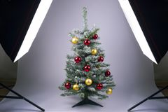 Christmas tree on a white background. While photographing in the studio stock photos