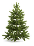 Christmas tree on a white background. Royalty Free Stock Image