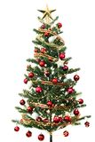 Christmas tree on white. Color background Royalty Free Stock Photography