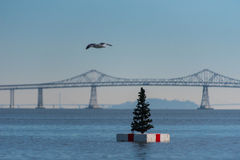 Christmas tree on a white float in San Franciso Bay Royalty Free Stock Images