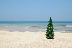 Christmas tree on the white sand beach on the background of blue sea and sky on a sunny day. Christmas tree on the white sand beach on the background of blue Stock Photo