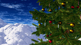 Christmas Tree in Winter Stock Photography