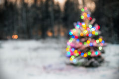 Christmas tree in winter forest with colored lights. Blurred background. vignette for artistic effect Royalty Free Stock Photo