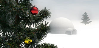 Christmas tree in winter scene stock photos