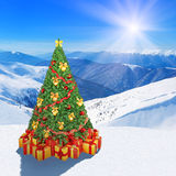 Christmas tree in winter snow mountains against sunshine sky bac Stock Image