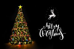 Christmas tree with wishes written royalty free stock image