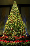 Christmas Tree With Decoration Royalty Free Stock Images
