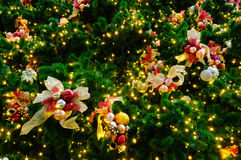 Christmas Tree With Decoration Royalty Free Stock Photo