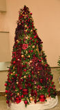 The  Christmas tree. A wonderful Christmas tree with its magical lights Stock Images