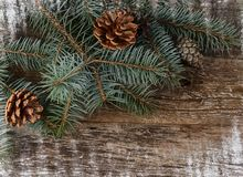 The christmas tree on wooden background Royalty Free Stock Photos