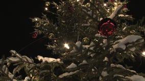 Christmas tree zoom stock video