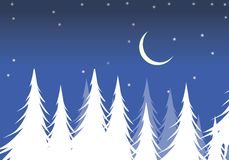 Christmas trees. Under the moon at Stock Image