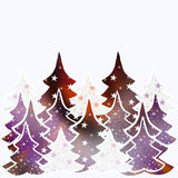 Christmas trees background with space for text Stock Photos