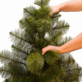 Christmas trees. Building artificial Christmas trees the details Royalty Free Stock Images