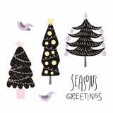 Christmas trees card vector illustration