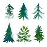 Christmas trees collection Stock Image