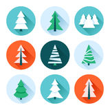 Christmas trees collection. Vector set of fir trees / pines / spruces Stock Images