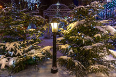 Christmas trees covered with snow. Two natural Christmas trees covered with snow with the street lamp in the middle, against gazebo in the garden Stock Images