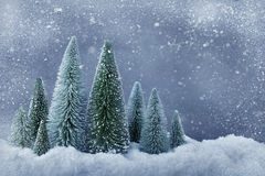 Christmas trees decoration Royalty Free Stock Image