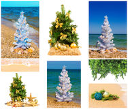 Christmas trees with decorations, set Royalty Free Stock Images
