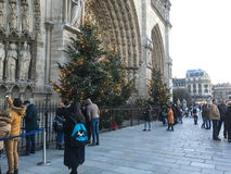 Christmas trees at the facade of Notre Dame cathedral, Paris, France Royalty Free Stock Photos