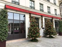 Christmas trees flank entrance of Les Dames du Pantheon hotel in Paris, France Royalty Free Stock Photos