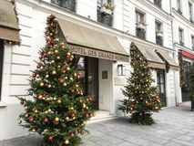 Christmas trees flank entrance to Hotel des Grands Hommes, Paris, France Stock Photo