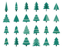 Christmas trees in a flat style. Firs isolation on a white background. Vector Stock Photo