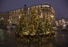 Christmas trees with garlands at the Manege Square in Moscow, Ru Royalty Free Stock Image