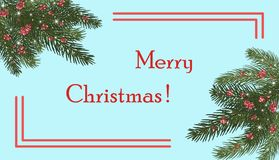 Christmas trees, isolated. Branches of Christmas trees and red. Xmas tree branches,red berries and snowflakes, sparkles.Merry Christmas and Happy New Year Royalty Free Stock Image