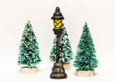 Christmas trees with lantern isolated Stock Image