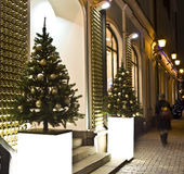 Christmas trees, Moscow Stock Photography