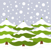 Christmas trees in nature Stock Image