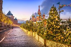 Free Christmas Trees On Red Square Stock Images - 163774614