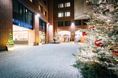 Christmas trees and passages at night, in Munich, Germany. Stock Photography