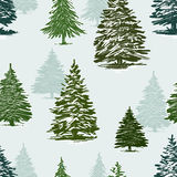 Christmas trees pattern. Vector pattern of the christmas trees Royalty Free Stock Image