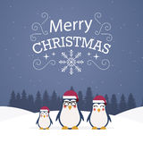 Christmas trees with penguins. Stock Image