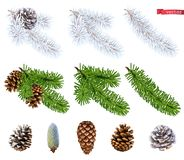 Christmas trees and pine cones. 3d realistic vector icon set. On white background royalty free illustration