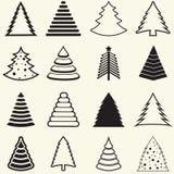 Christmas Trees Stock Photography