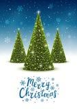 Christmas trees on shiny background Stock Image